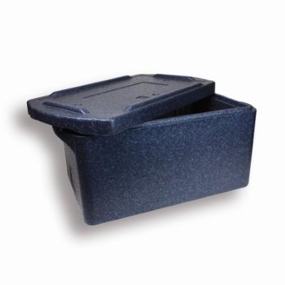 Transportbox BlueLine 30L