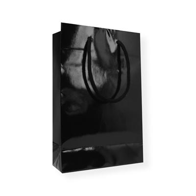 Glossy Bag 160 x 80 x 250 zwart