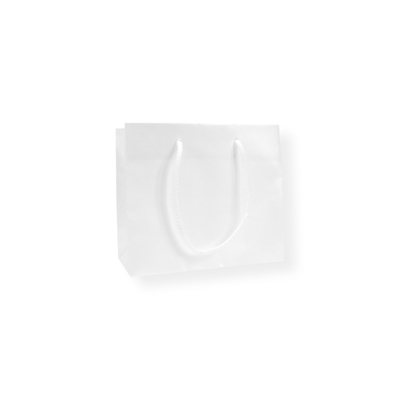 Glossy Bag Parel Wit 22x10x19cm+5cm