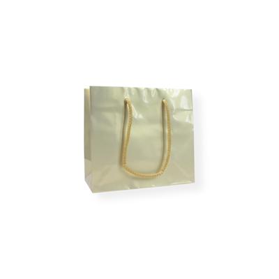 Glossy Bag Pearl Gold 22x10x19cm+5cm