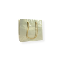 GlossyBag Pearl White 220 mm x 190 mm Gold